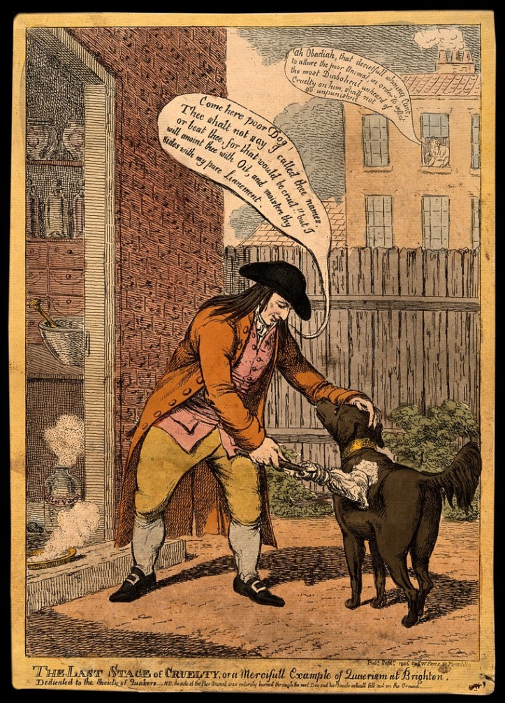 Glaisyer vitriol dog 1806